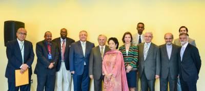 نیویارک:اقوام متحدہ میں پاکستانی مندوب ملیحہ لودھی کی اوآئی سی کےارکان سےملاقات