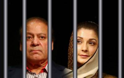 جیل میں گرمی حبس اور مچھروں نے نواز شریف اور ان کی بیٹی کو پریشان کردیا ہے۔ دونوں نے متعدد بار شکایات بھی کیں