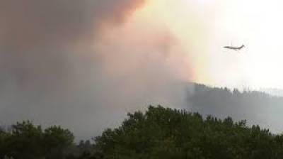 امریکی ریاست کیلیفورنیاکےجنگلات میں آگ سےاموات کی تعداد8ہوگئی،امریکی میڈیا