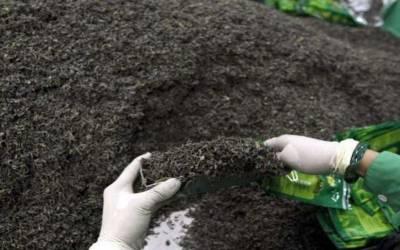 گذشتہ سال ملک میں چائے کی درآمدات میں 5.36 فیصد اضافہ