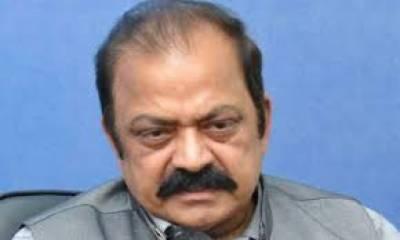 لاہورہائیکورٹ نے رانا ثناءاللہ کی سیکیورٹی تاحکم ثانی واپس نہ لینے کا حکم دیدیا