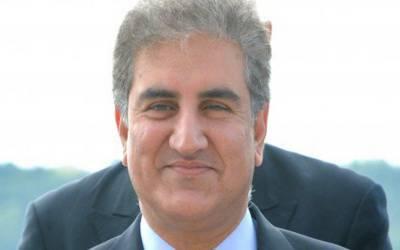 ن لیگ اور پیپلزپارٹی کا اتحاد غیر فطری اور دیرپا نہیں۔ شاہ محمود قریشی