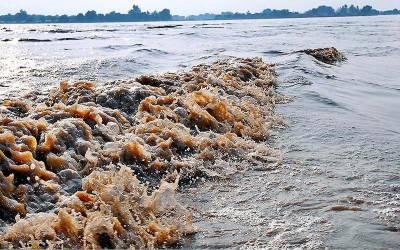 دریائے چناب میں نچلے درجے کاسیلاب، الرٹ جاری