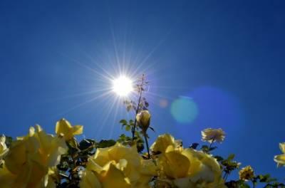 آئندہ چوبیس گھنٹے کےدوران ملک کے بیشتر علاقوں میں موسم گرم اور خشک رہیگا،