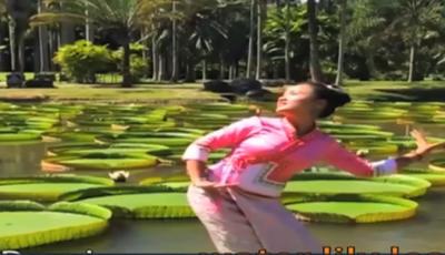 کنول کے پتوں پر چینی خواتین کےشانداررقص نے دیکھنے والوں کو حیران کر دیا