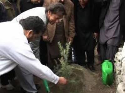 وزیراعظم عمران خان کل پودا لگا کر پلانٹ فار پاکستان مہم کا آغاز کریں گے