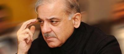 خلوص نیت سے اپوزیشن کو اکٹھا کرنے کی کوشش کی,صدر مسلم لیگ ن شہباز شریف