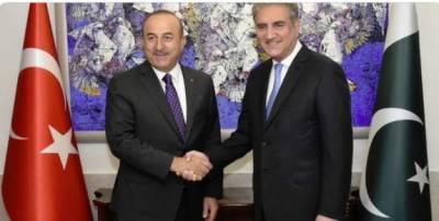 ترکی اور پاکستان کا تعلق حکومتوں تک محدود نہیں، شاہ محمود قریشی