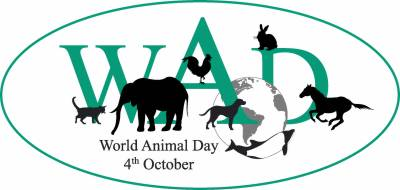 World Animal Day Reminds of the Serious Issue in the world
