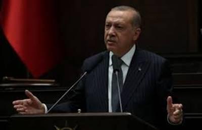 ترکی نے اقوام متحدہ کی سلامتی کونسل میں ضروری اصلاحات پرزوردیا