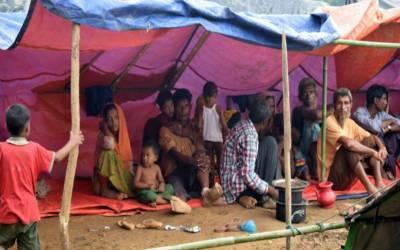 بنگلہ دیش سے روہنگیا پناہ گزینوں کی ایک غیرآباد جزیرے پر منتقلی