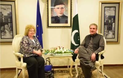 وزیر خارجہ شاہ محمود قریشی سے یورپی پارلیمنٹ کے وفد کی ملاقات