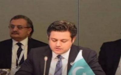 وزارت خزانہ کی جانب پاناما لیکس میں شامل پاکستانیوں کے خلاف کارروائی کا اعلان