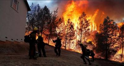 کیلیفورنیا:جنگل کی آگ نے9افراد کی جانیں لے لیں