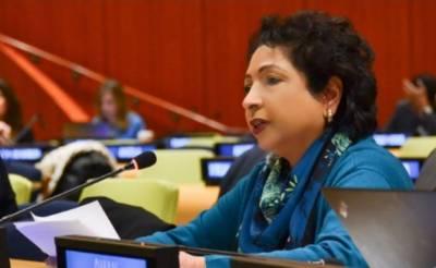 فعال اور مضبوط اقوام متحدہ عالمی امن اور استحکام کے لیے ناگزیر ہے:ملیحہ لودھی