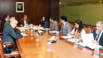 وزیر خارجہ شاہ محمود قریشی سے روسی سفیر کی ملاقات
