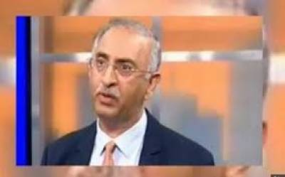 غیر ملکی کمپنیاں پاکستان میں سرمایہ کاری کیلئے گہری دلچسپی لے رہی ہیں، ڈاکٹر فرخ سلیم