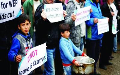 ورلڈ فوڈ پروگرام کا فنڈز میں کمی کے باعث فلسطینیوں کے لیے امداد میں کمی کا اعلان