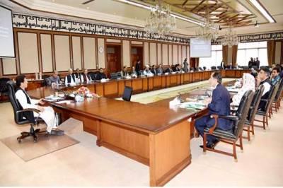 وفاقی کابینہ: محسن داوڑ، علی وزیر کے نام ای سی ایل سے نکالنے کا حکم