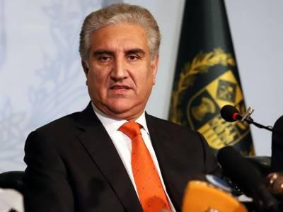پاکستان میں قطر کی سرمایہ کاری کے بے پناہ مواقع ہیں: شاہ محمود قریشی