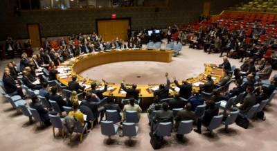 سلامتی کونسل: 5نئے رکن ممالک منتخب