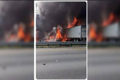 فلوریڈا: 2 ٹریلر مسافر وین سے ٹکرا گئے، 6 افراد ہلاک، 8 زخمی