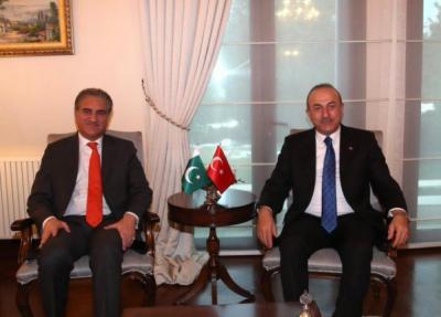 پاکستان اور ترکی کا افغان مسئلے کے پرامن حل کیلئے مشترکہ کاوشیں جاری رکھنے کا عزم، شاہ محمود قریشی