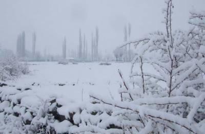 گلگت بلتستان میں شدید سردی کی لہر, درجہ حرارت نکتہ انجماد سے نیچے