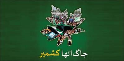 جاگ اٹھا کشمیر، خصوصی آگاہی مہم کا آغاز