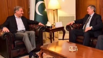وزیر خارجہ شاہ محمود قریشی سے روسی صدر کے نمائندہ خصوصی کی ملاقات