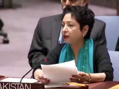 سلامتی کونسل میں توسیع تمام ممالک کے مفاد میں ہونی چاہیے،ملیحہ لودھی