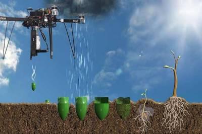 10 بلین درخت سونامی' کے پودے لگانے کے لئے ڈرو ٹیکنالوجی کا استعمال