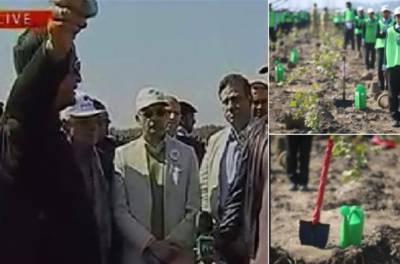 وزیراعظم عمران خان نے بلوکی میں شجرکاری مہم کا آغاز کر دیا