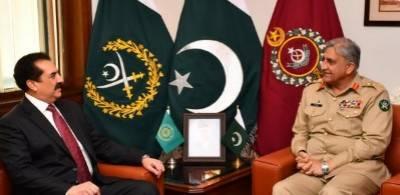 آرمی چیف سے اسلامی فوجی اتحاد کے سربراہ راحیل شریف کی ملاقات