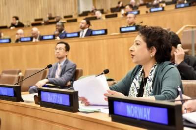 ملیحہ لودھی کااقوام متحدہ کی امن مشنزکاجائزہ لینےوالی کمیٹی میں خطاب