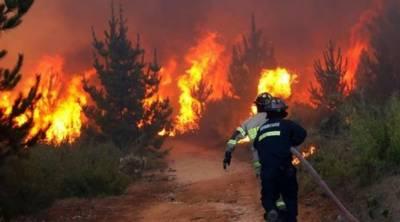 چلی کے گھنے جنگل میں آتشزدگی، 2 افراد ہلاک
