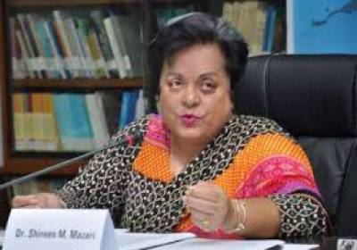 شیریں مزاری کاانسانی حقوق کے تحفظ کیلئے حکومت کے پختہ عزم کااعادہ