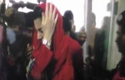 مریم نواز کی جناح ہسپتال آمد پر دھکم پیل، کیمرہ سر پر لگ گیا
