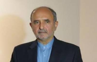 پاکستان اور ایران کودہشتگردی کے مسئلے کا مشترکہ طور پر سامنا ہے : مہدی ہنر دوست