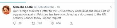 پاکستان کی امن پسندی کو کمزوری نہ سمجھا جائے، ملیحہ لودھی