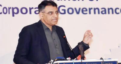 بھارت فنانشل ایکشن ٹاسک فورس میں پاکستان کیخلاف لابنگ کررہا ہے: وزیر خزانہ اسد عمر