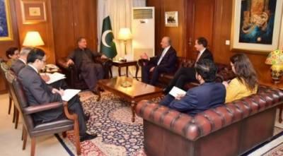 وزیر خارجہ شاہ محمود قریشی نے زلمے خلیل زاد سے ملاقات کی، جس میں افغان مفاہمتی عمل سمیت دو طرفہ علاقائی امور پر تبادلہ خیال کیا گیا