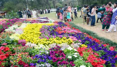 اسلام آباد:چنبیلی اور گلاب باغ میں ایک اور پھولوں وپرندوں کی نمائش شروع ہوگئی