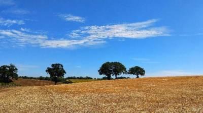 ملک کے بیشتر حصوں میں موسم زیادہ تر خشک رہنے کاامکان