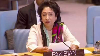 پاکستان کا مختلف تنازعات کی بنیادی وجوہات دور کرنے کیلئے عالمی کوششوں پر زور