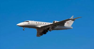 لاس اینجلس سے میکسیکو جانیوالا طیارہ گرکرتباہ ،14 مسافر ہلاک