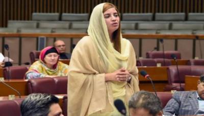 حکومت وفاقی دارالحکومت میں اس سال چودہ اگست تک پلاسٹک کے تھیلوں کے استعمال پرپابندی عائد کردے گی:زرتاج گل