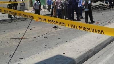 مصر:سیاحوں کی بس کو نشانہ بنانے کے نتیجے میں 16 افراد زخمی