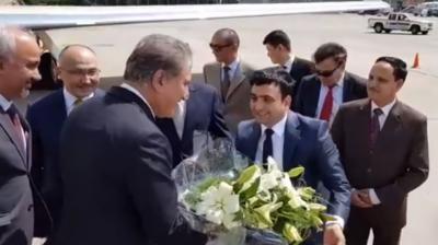 وزیر خارجہ شاہ محمود قریشی کی کرغز ہم منصب چنگیز ایڈربیکوف سے ملاقات