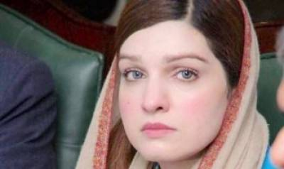 کشمیر کی صورتحال کے تناطرمیں حکومت پاکستان کل جماعتی کانفرنس بلائے۔ مشعال ملک